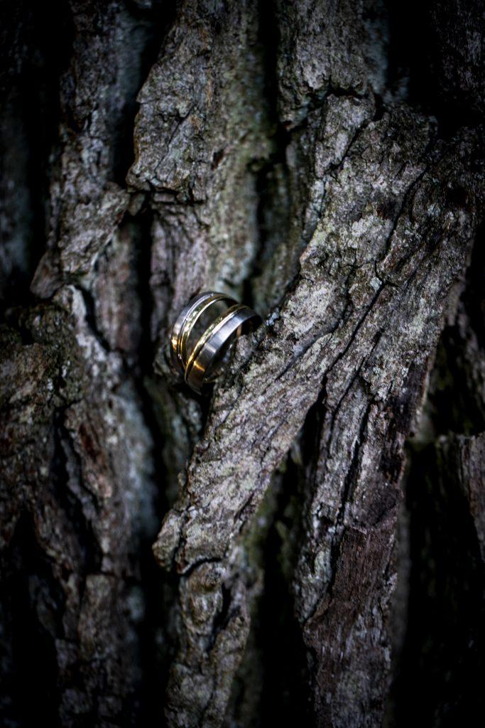 Ein Bild von Eheringen in einem Baum, Aufnahmeort Regensburg | KK-Fotografie